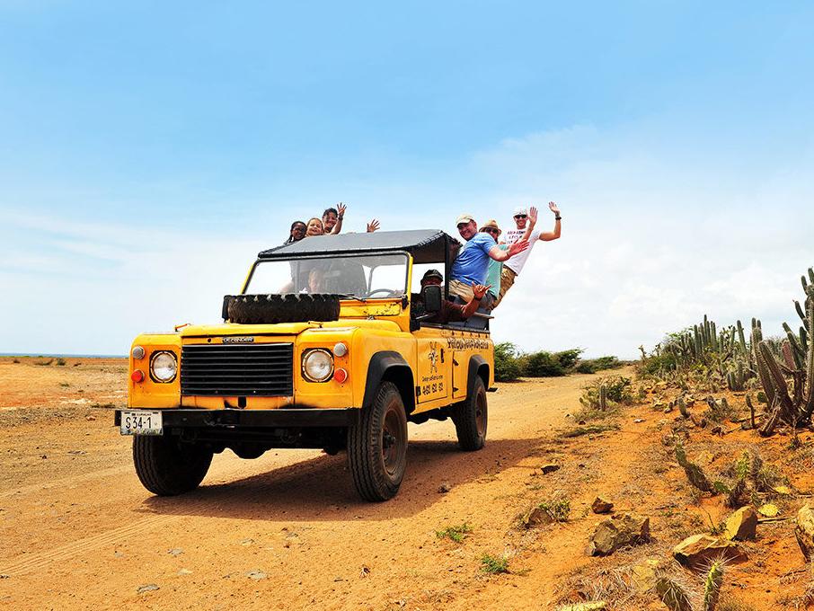 yellow adventures
